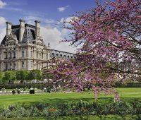 France, Ile de France, Paris, Jardin des Tuileries and the Louvre Museum. (Photo by: Eye Ubiquitous/UIG via Getty Images)