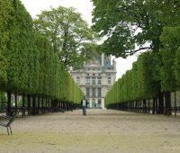 paris-jardin-des-tuileries-